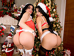 Enormous Double Asses